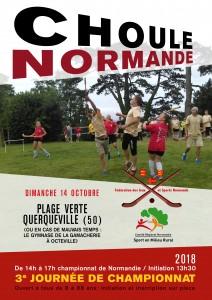 affiche choulle-crosse1-2018C-01