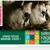 la Race Normande au Salon de l'agriculture 22-26 fev